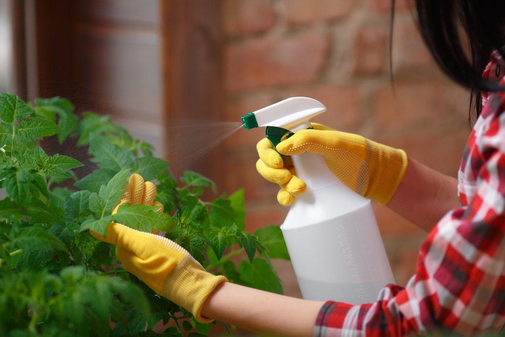 φυσικά και βιολογικά εντομοκτόνα για φυτά και καλλιέργειες
